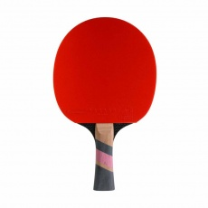 Conrilleau Excell Carbon 3000 table tennis bats