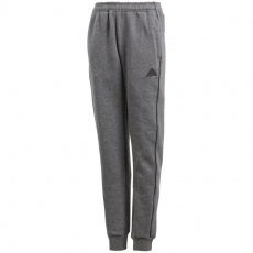 Adidas Core 18 Sweat JR CV3957 pants