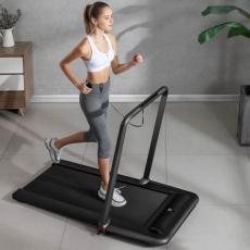 Flow Fitness DTM200i walking treadmill