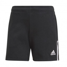 Adidas Tiro 21 Sweat W GM7330 shorts