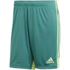 Adidas M Tastigo 19 Shorts DP3251 shorts