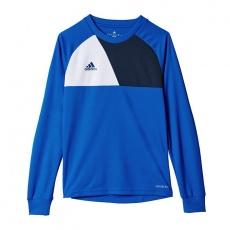 Adidas Assita 17 Jr AZ5404 sweatshirt