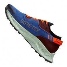 Running shoes Nike Pegasus Trail 2 GTX W CU2018-600