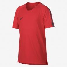Breathe Squad TOP SS 18 Jr 916117-696 football jersey