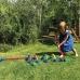 Cricket game for children Soft Croquet
