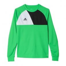 Adidas Assita 17 Jr AZ5406 sweatshirt