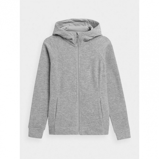 Sweatshirt 4F W NOSH4-PLD351 Light gray