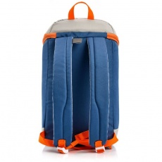 Arctic 10L thermal backpack