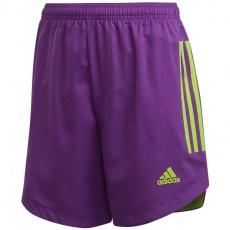 Adidas Condivo 20 Jr FI4600 training shorts