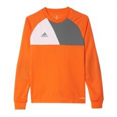 Adidas Assita 17 Jr AZ5402 sweatshirt