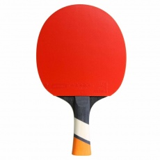 Cornilleau Perform 428000 table tennis bats