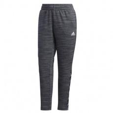 Adidas Essentials Tape Pant W GE1132