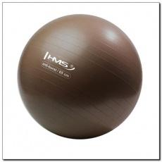 Anti-Burst Grizzly gym ball 65 cm