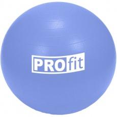 Profit 65cm gym ball DK 2102