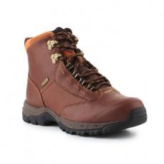 Ariat Berwick GTX W shoes
